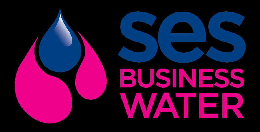 SES Business colour